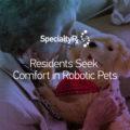 Residents Seek Comfort in Robotic Pets